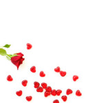 hearts rose