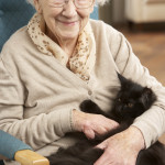 senior woman holding her pet cat