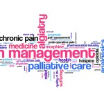 word cloud of palliative care terms